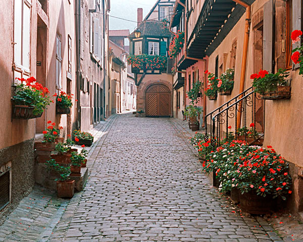 Alsace Alley