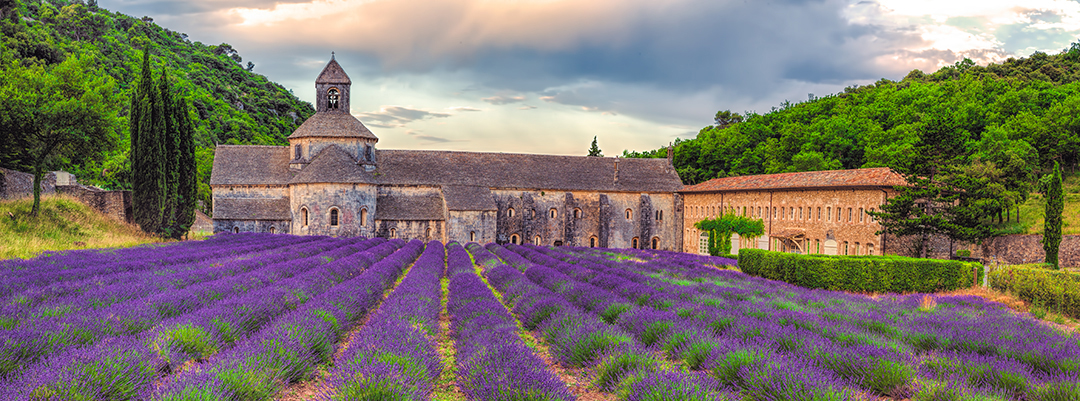 S�nanque Abbey - Provence, France