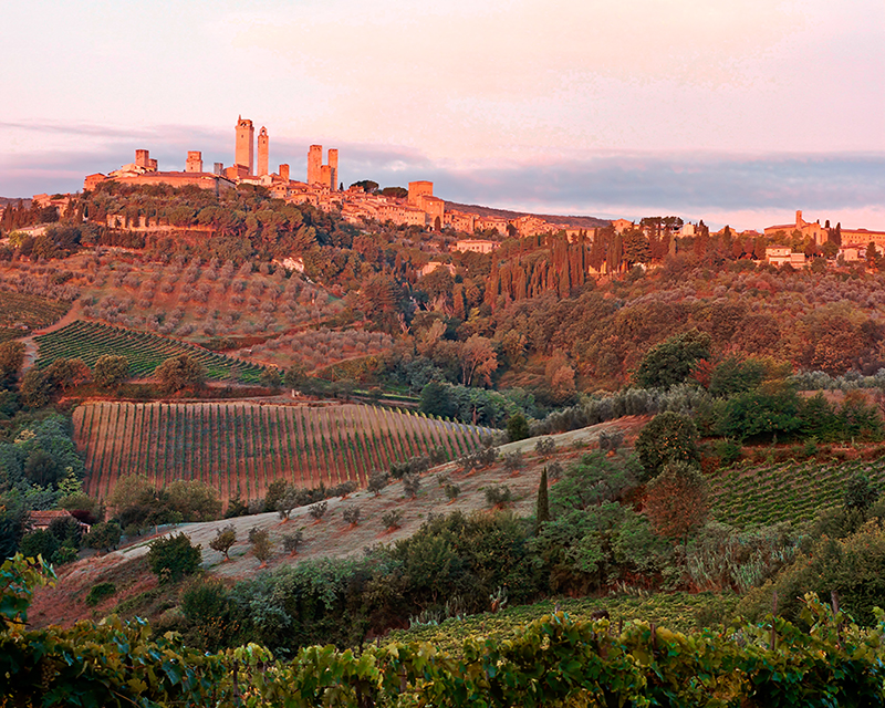 Harvest Light - San Gimignano, Italy