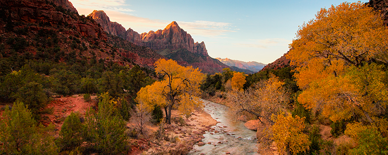 Zion's Fall Coat - Zion National Park